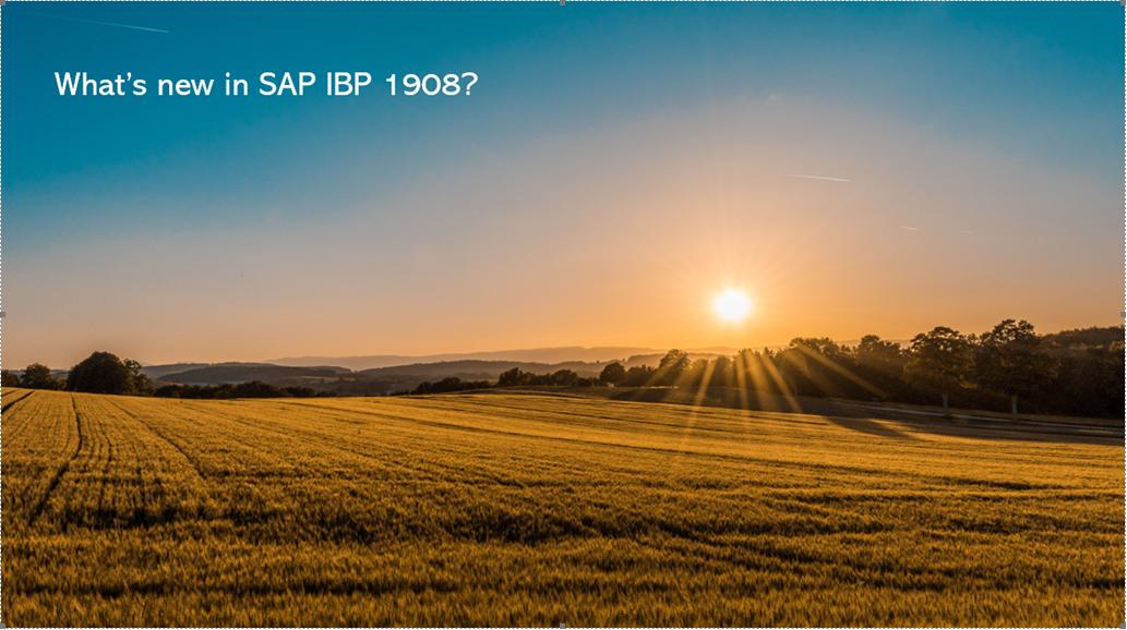 SAP IBP 1908